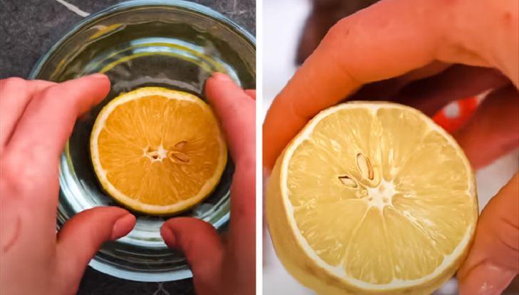 انقاذ الليمون من الجفاف
