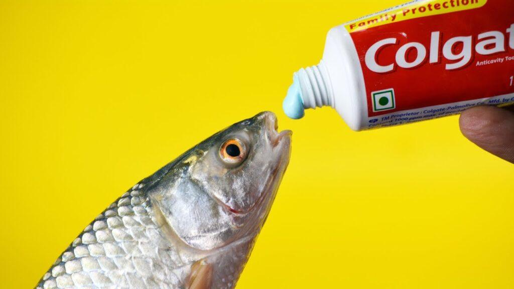 كيف تتخلصين من رائحة السمك العالقة على يديك ؟